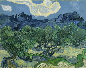 300px-van_gogh_the_olive_trees